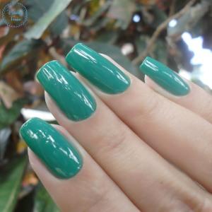 quem-disse-berenice-verdasso-blog-patricia-torrao-2