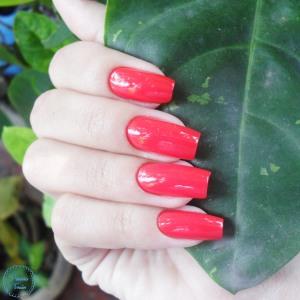 impala-merengue-blog-patricia-torrao-5
