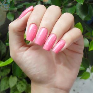 impala-pink-blog-patricia-torrao-3