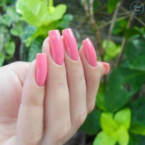 impala-pink-blog-patricia-torrao-4
