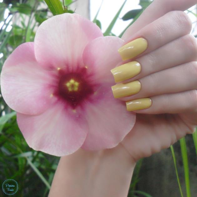 impala-floral-citrico-blog-patricia-torrao-7